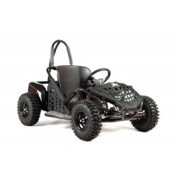 XTR Go Kart 1000W